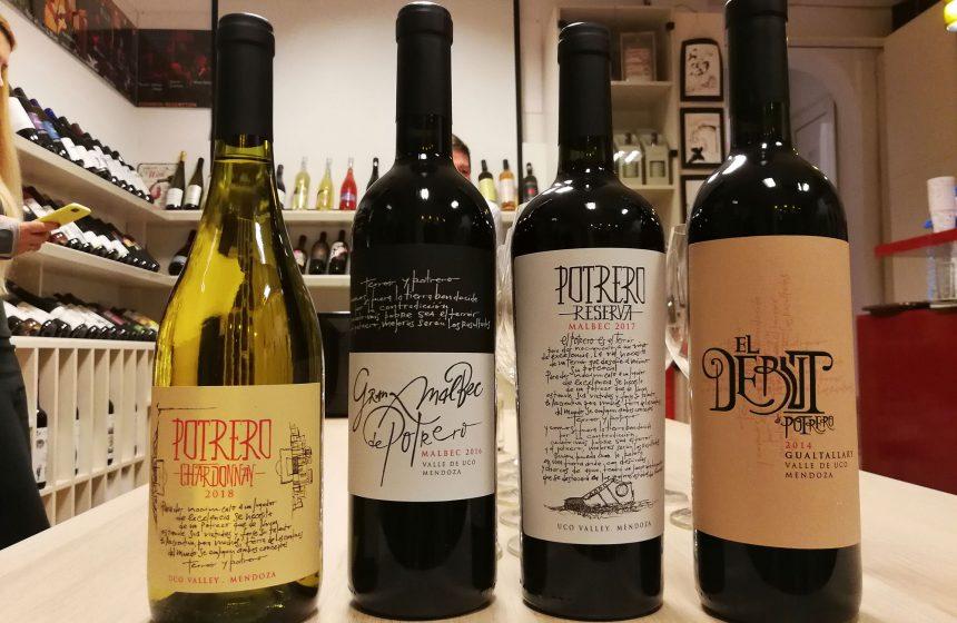 Descoperă vinurile Argentinei. Mendoza