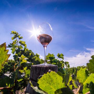 7 idei de cadouri pentru iubitorii de vin